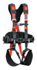 Harness-P81